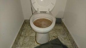 Comment déboucher des toilettes sans ventouse